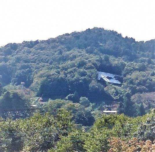 自然と芸術が織りなす藤野の魅力を見つけ・つくり・伝えるNPO法人ふじの里山くらぶ